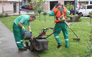 En verano aumenta la demanda de mantenimiento y arreglo de for Trabajo de mantenimiento de jardines