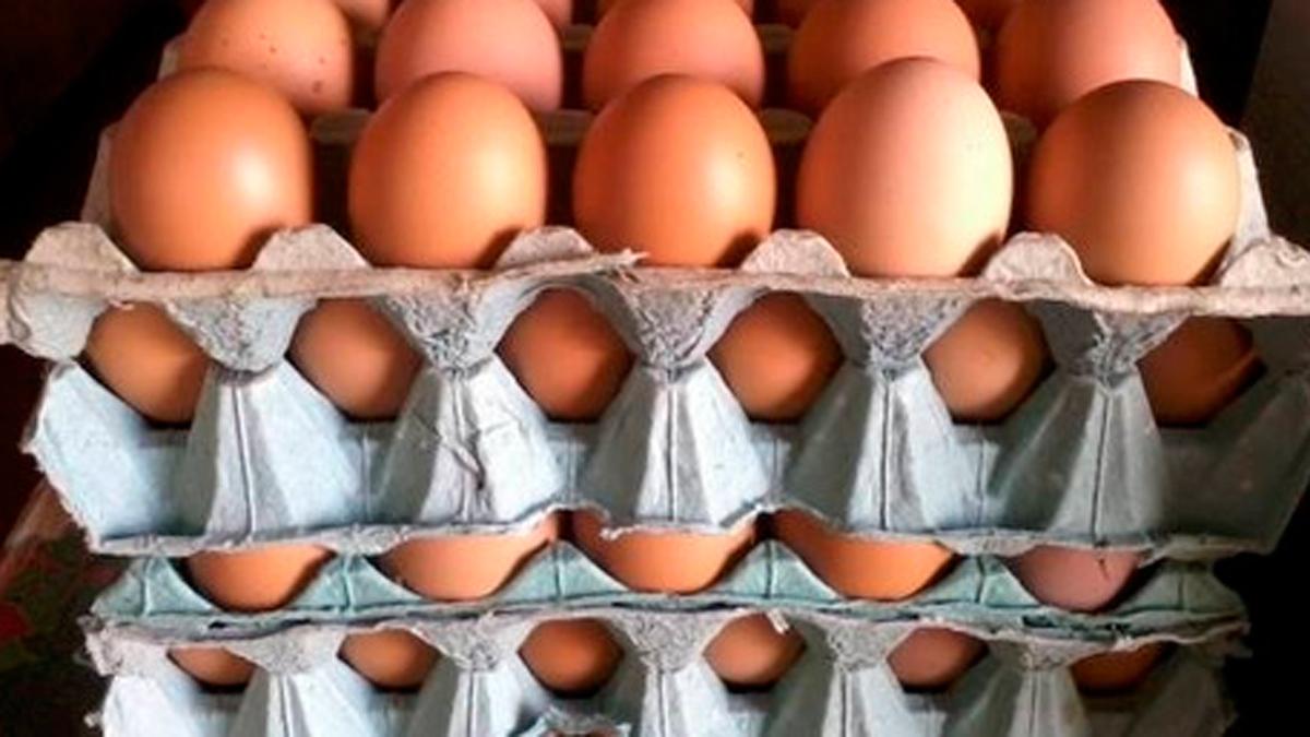 Aumento de precios en comercios barriales: un maple de huevos sale ...